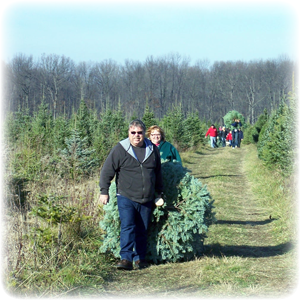 Huron Christmas Farm